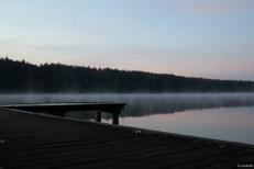 naturfotografie jagdschloss waldsee