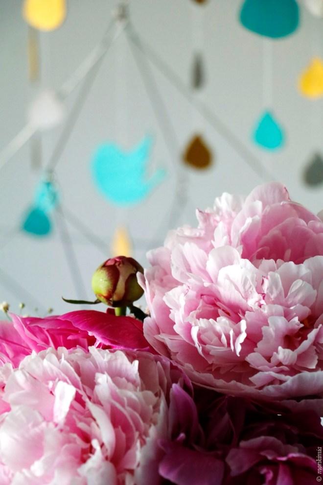 Fotoworkshop Monkimia Blumen