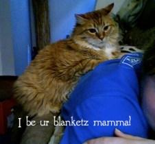 Henry, my cat, sits on my back