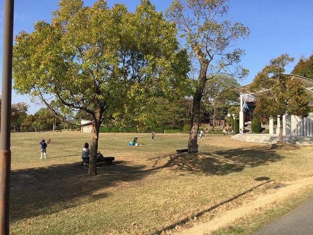公園の広場2