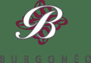 logo-burgoneo