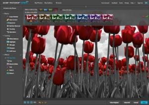 photoshop_express_pop_color