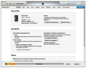 Le panneau Résumé d'iTunes. Dans la barre horizontale, les boutons donnent accès à d'autres panneaux