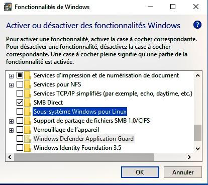 Activer le sous-système Windows pour Linux
