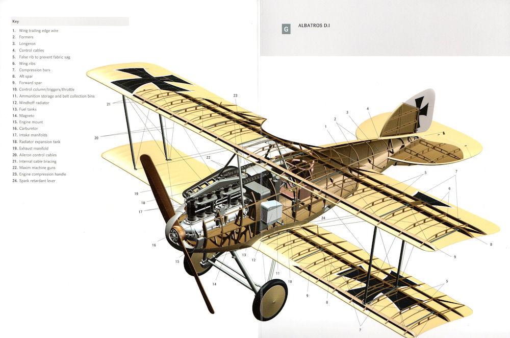 Albatros D.I - Coupe