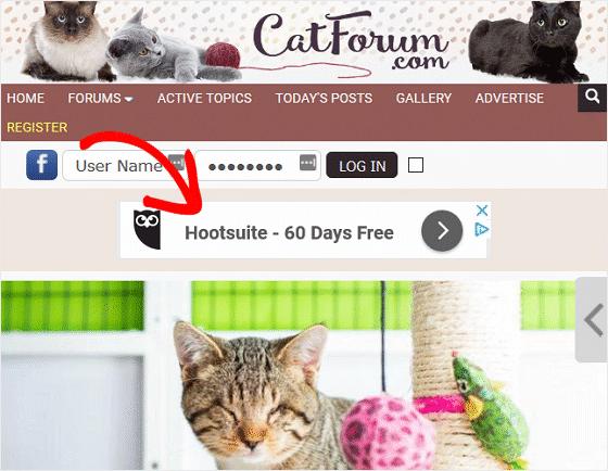 Google AdSense Forum Site Example