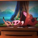 Timon & Pumbaa The Complete Series 3 Seasons with 85 (131 Segments) on 5 Blu-ray Discs in 720p HD