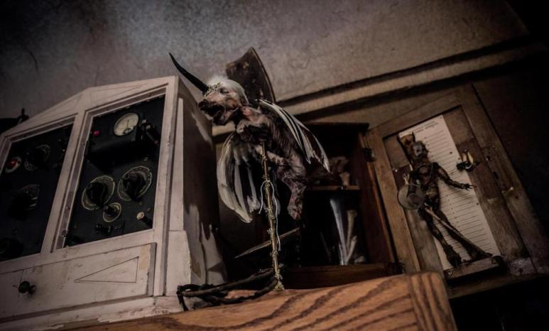 Ghost Hunters and the Haunted Museum