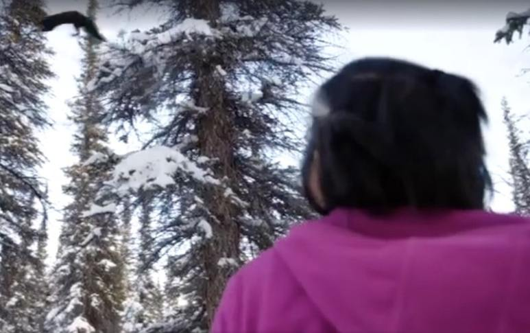 Edna looks on in awe as the marten leaps from one tree to another