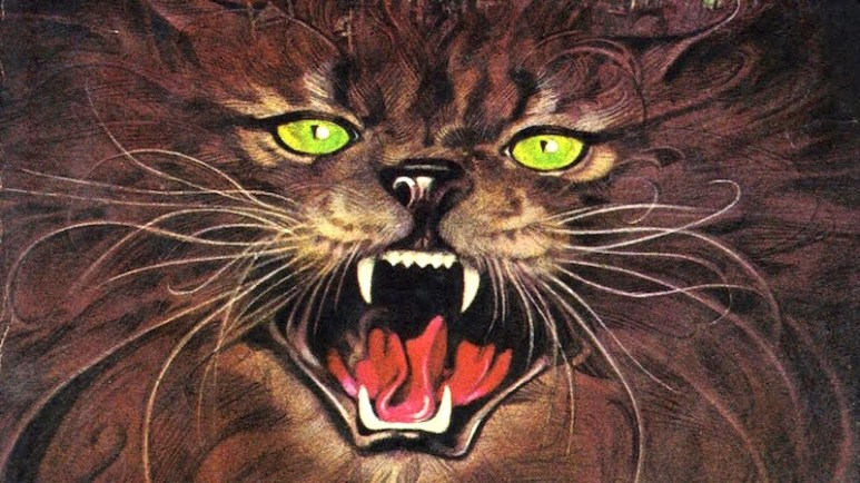 Cat on first edition cover of Pet Sematary by Stephen King
