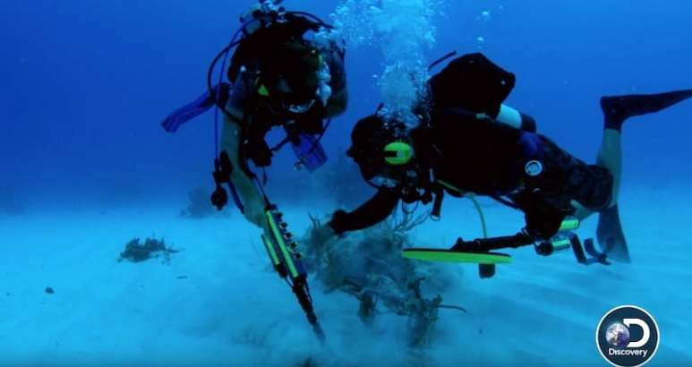 Two divers, one is Darrell Miklos, looking at something on the seabed
