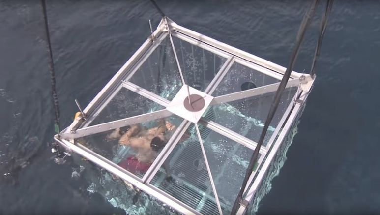 Contestants in a tank underwater, as it's lowered by chains