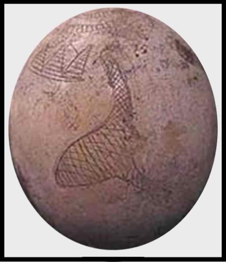 The engraved ostrich egg found by Mallaby Cecil Firth