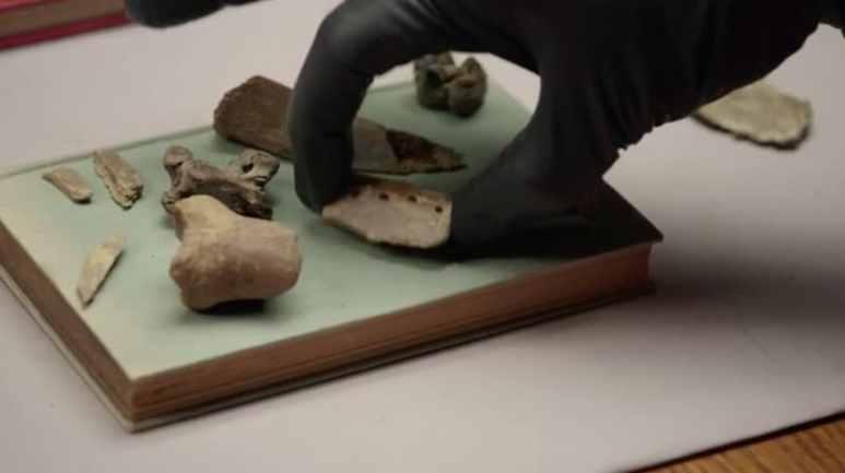 Bones on The Curse of Oak Island