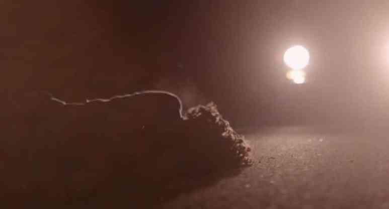 Wanda Murray lying on highway