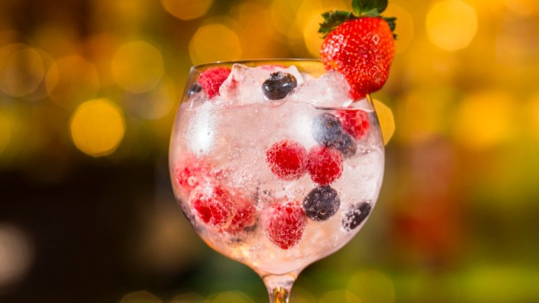 Time to lighten up those drinks, gin is the component in this fruity fizzer. Pic credit: Rí Rá Irish Pub