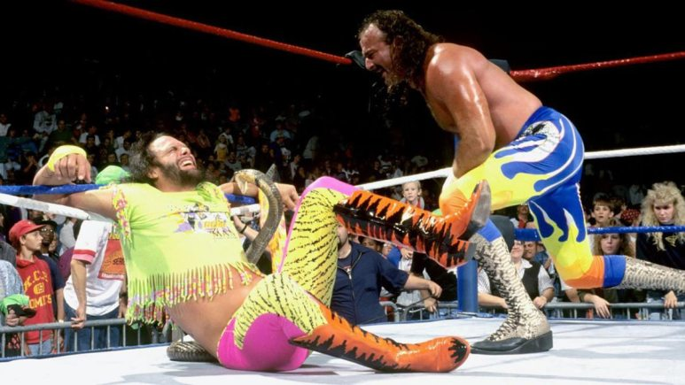 Jake the Snake Roberts rand Randy Savage