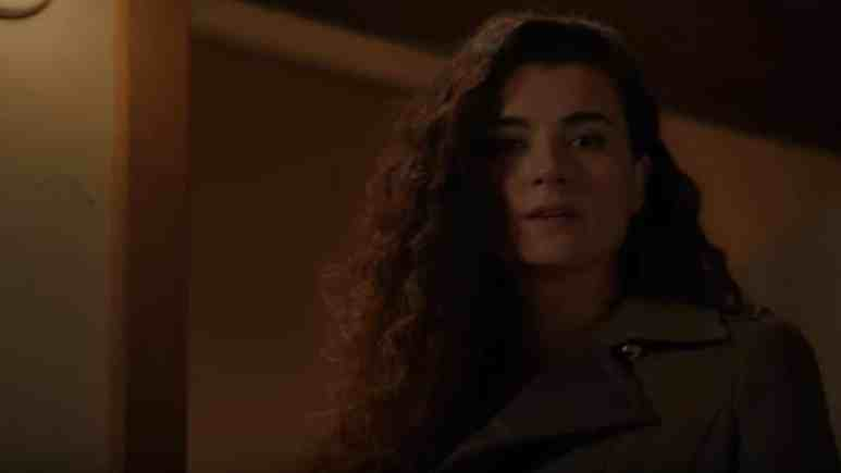 Cote de Pablo as Ziva David on the NCIS Season 16 finale.