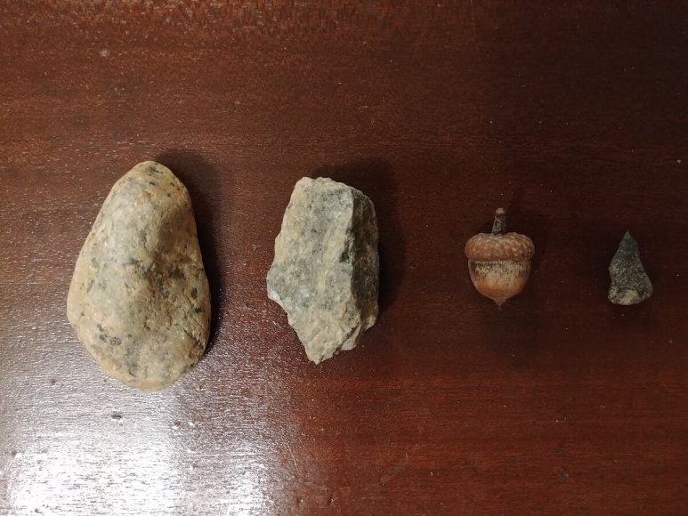 The two stones from the swamp area, the acorn, and the arrow-shaped stone