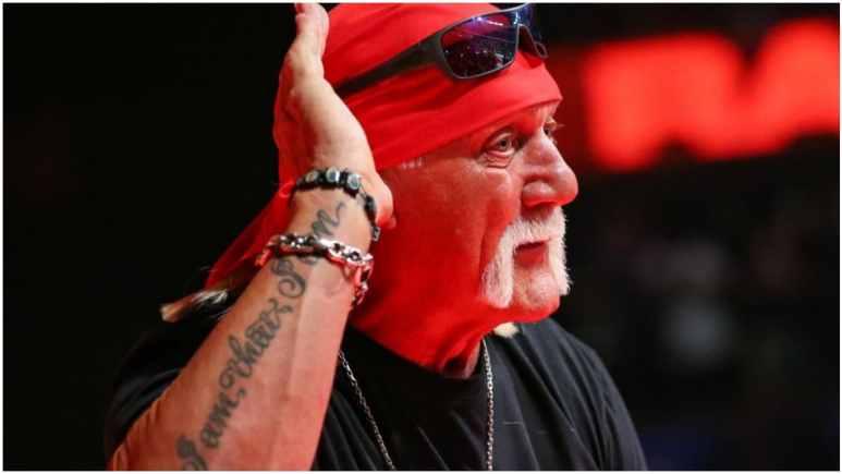 Hulk Hogan explains how he got backstage heat in WWE because of CM Punk