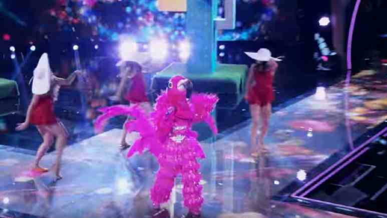 Flamingo on The Masked Singer