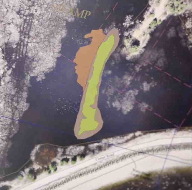 Image showing the anomaly in the Oak Island swamp