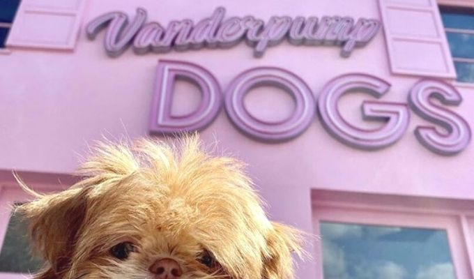 Vanderpump Dogs location Los Angeles