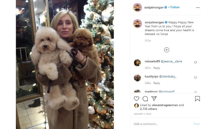 RHONY star Sonja Morgan celebrating New Years