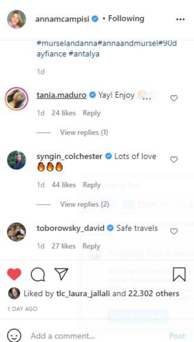 90 Day Fiance Anna's IG comments on pic