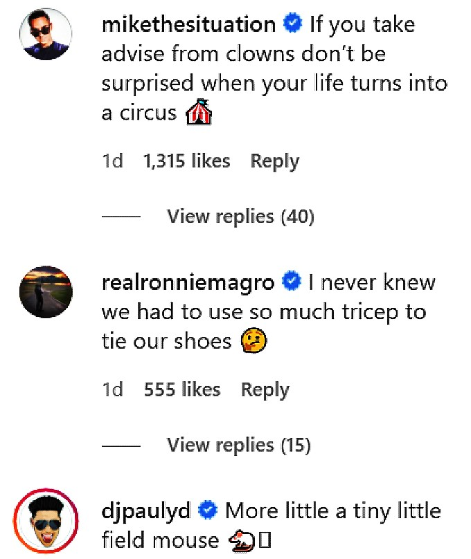 Comments made by Jersey Shore co-stars on Vinny Guadagnino's IG post.