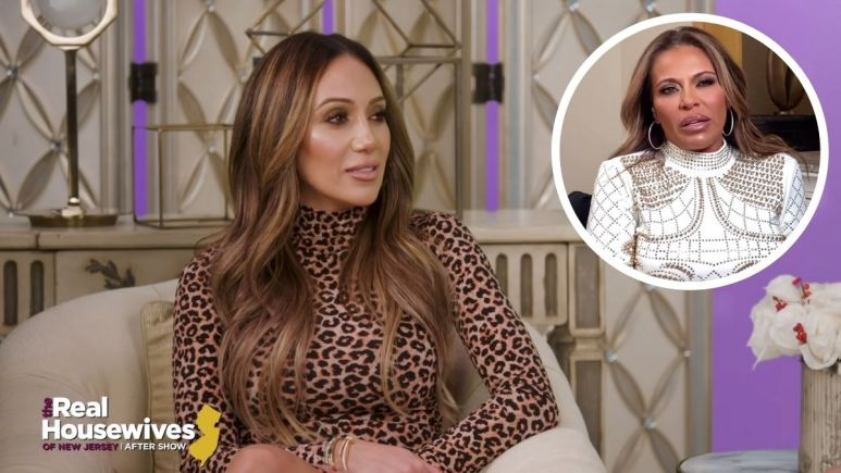 Did Melissa Gorga throw shade at her RHONJ costar Dolores Catania?