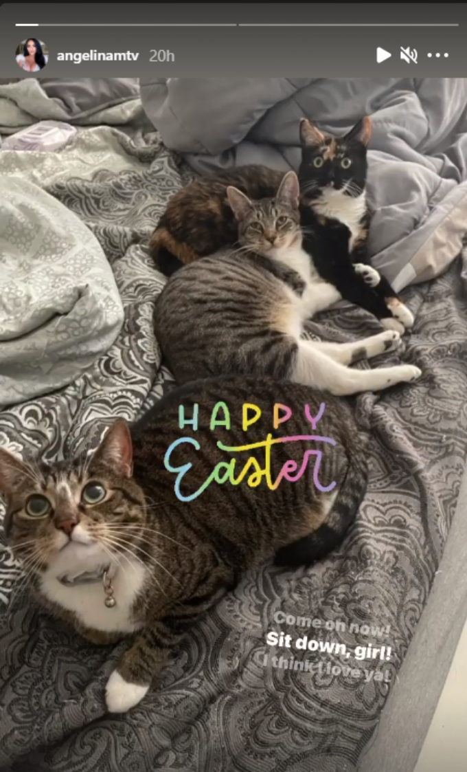 Angelina Pivarnick spends time with her cats on Easter