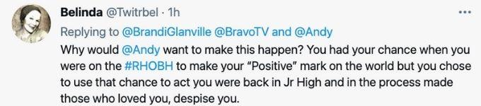 Fan does not want Brandi on Bravo's Chat Room tweet.