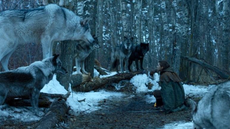 Maisie Williams stars as Arya Stark in HBO's Game of Thrones