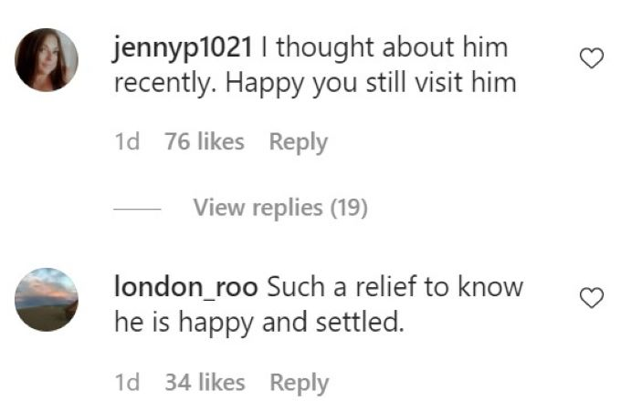 Comments about Andy's dog, Wacha.