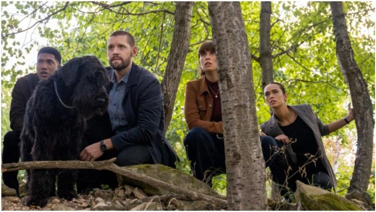 FBI: International cast in the woods