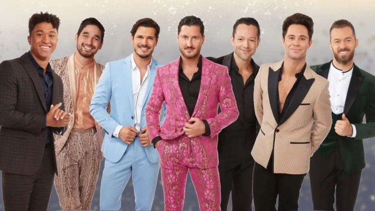 Dancing With the Stars male pros