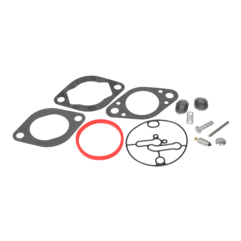 Carburetor Repair Kit 696146, 696147 for Briggs & Stratton