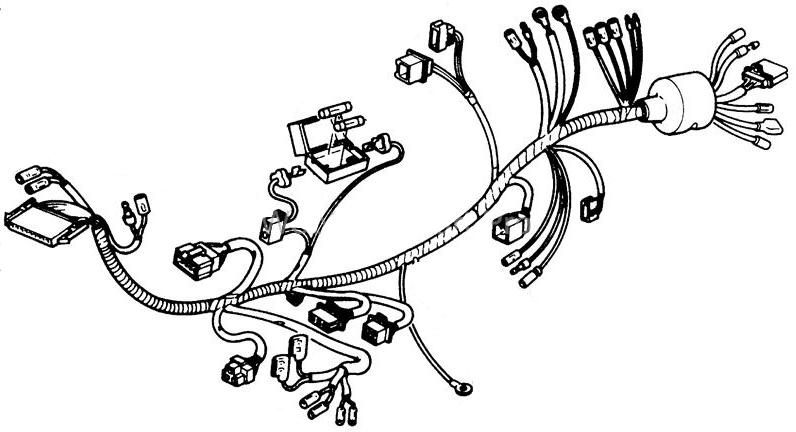 Wire Harness for Honda Elite 250 (1988 Models) (OEM