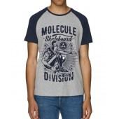Molecule Division Raglan T-Shirt - Blue/Grey