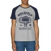 Molecule Play Or Die Raglan T-Shirt - Blue/Grey
