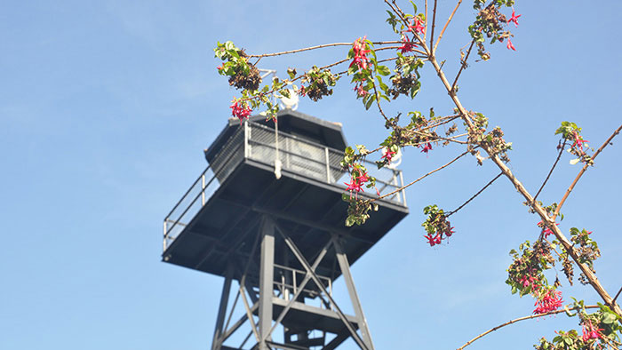 como-visitar-alcatraz-03
