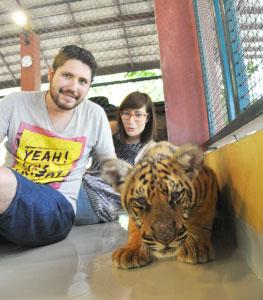 Visita-a-Tiger-Kingdom-1