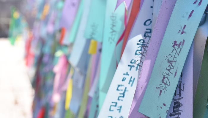 Ruta-Corea-del-Sur-DMZ-cintas