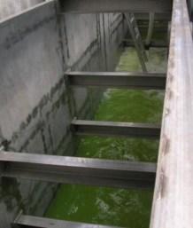 Sogin, Vasche di raccolta drenaggi, Saluggia