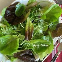 Salada orgânica fresca com  limão e um toque alho cru!