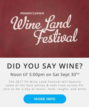 PA Wine Land Festival | Montage Mountain | Pennysylvania Wine