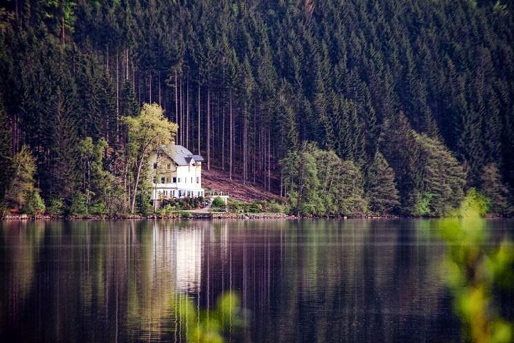 La foresta nera, profile picture. Sci E Vacanze In Foresta Nera Sci In Austria
