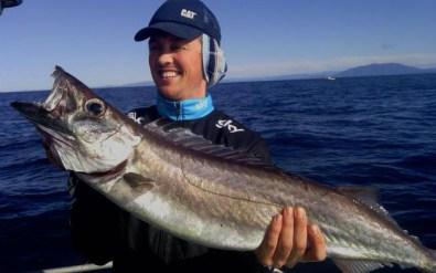 gem fish narooma