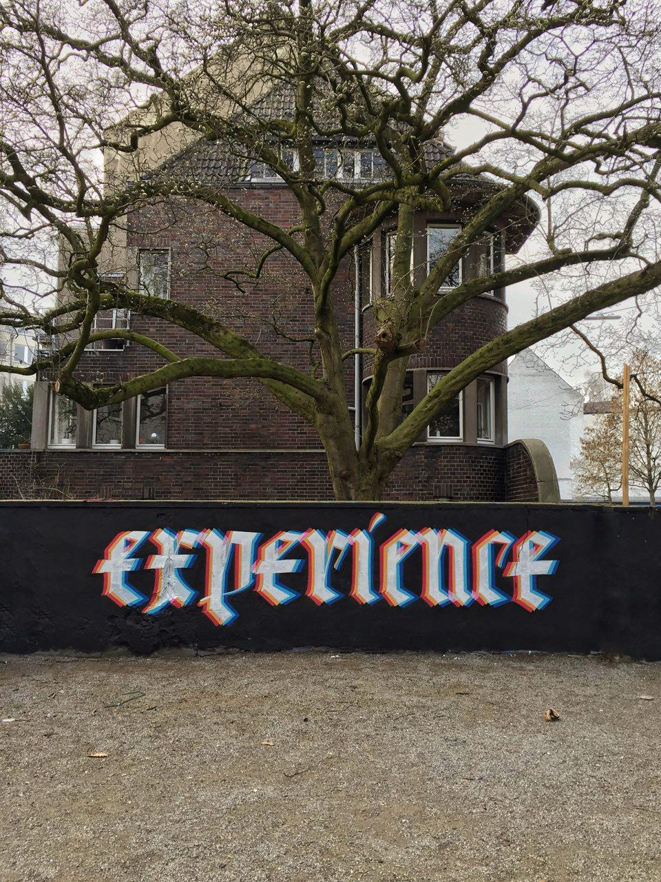 Hoker_2018_Experience_1